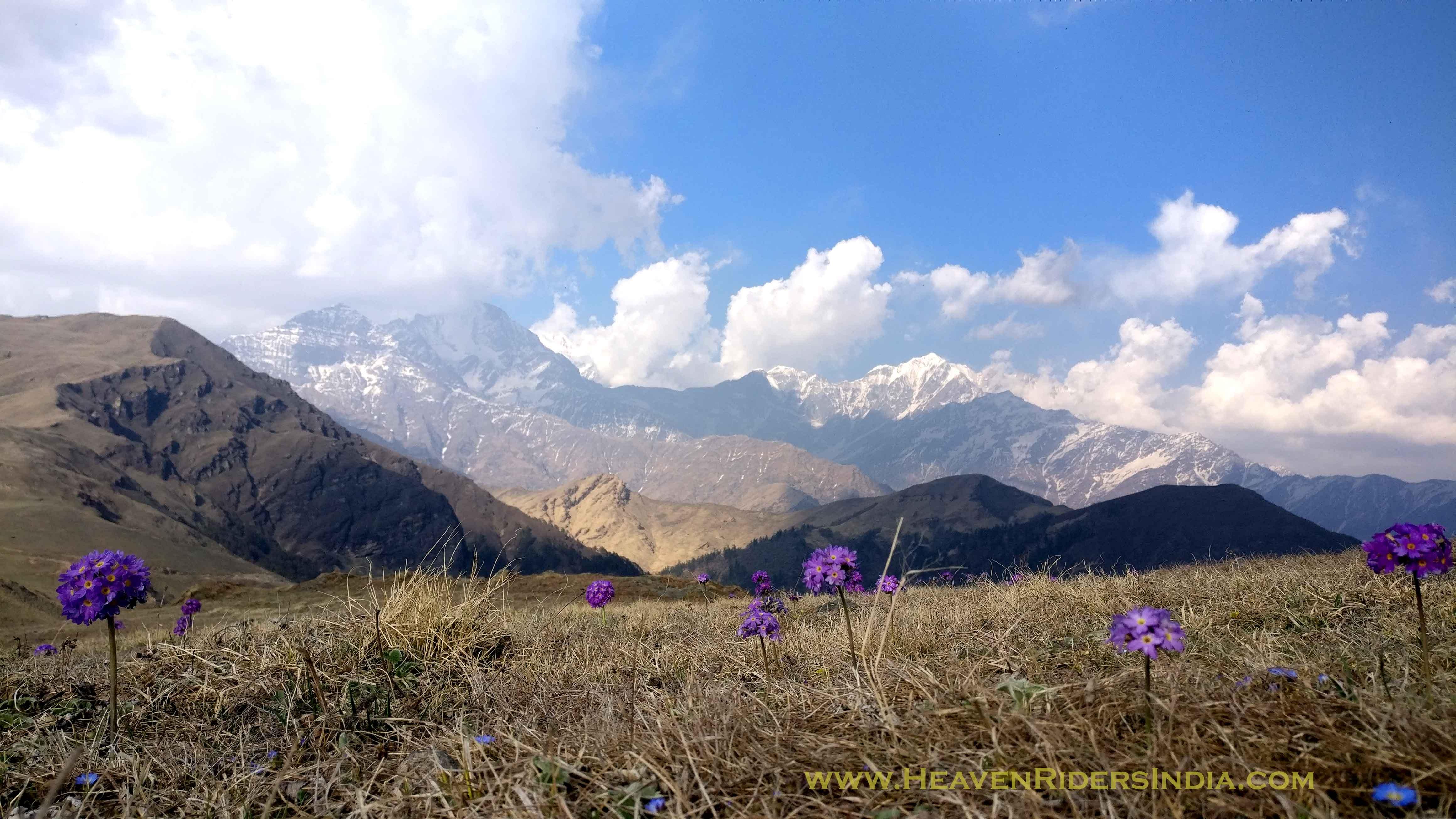Bedni Budgyal on Roopkund Trek